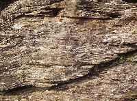 mère roche schiste